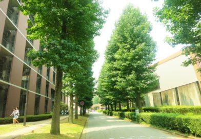Kindai University (近畿大学)